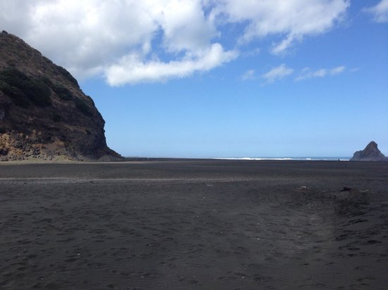 Auckland Wine Trail Tours: Black sand beach