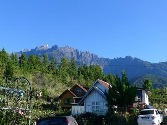 Kiram's Village : view of Mount Kinabalu. best view from sunrise until 8am, depending on the weather