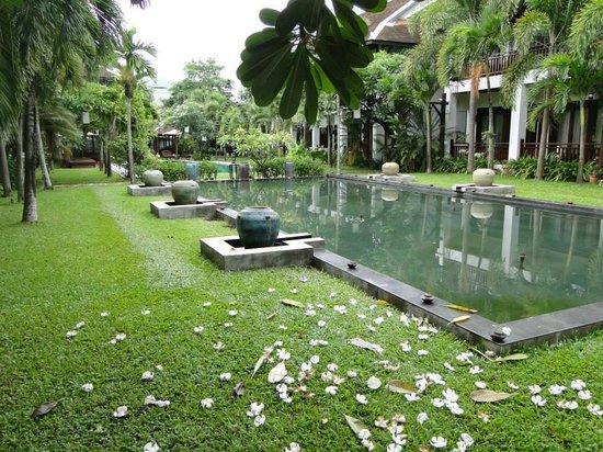 Green Park Boutique Hotel : Garden