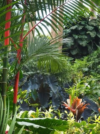 Hunte's Gardens : Lots of colors and textures