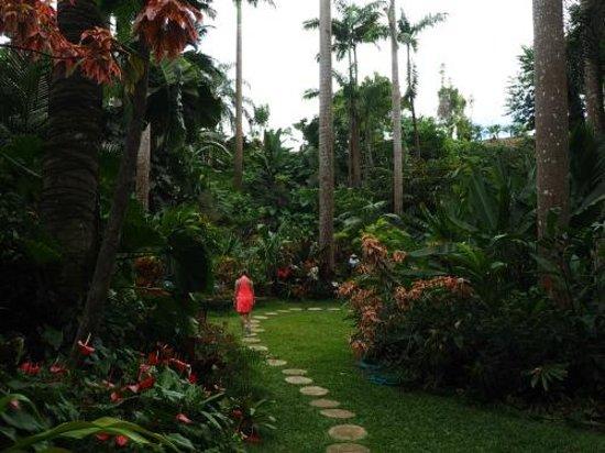 Hunte's Gardens : Peaceful