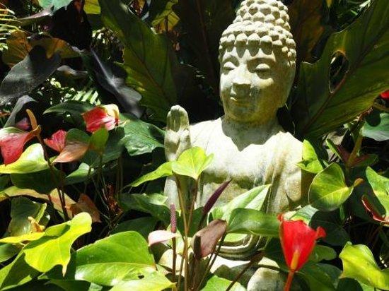 Hunte's Gardens : Humble