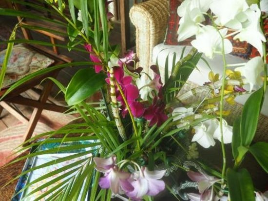 Hunte's Gardens : Cut flowers on the porch