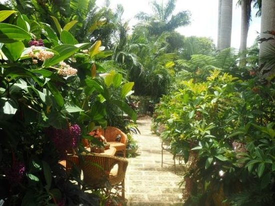 Hunte's Gardens : Plenty of spots to relax and take it all in