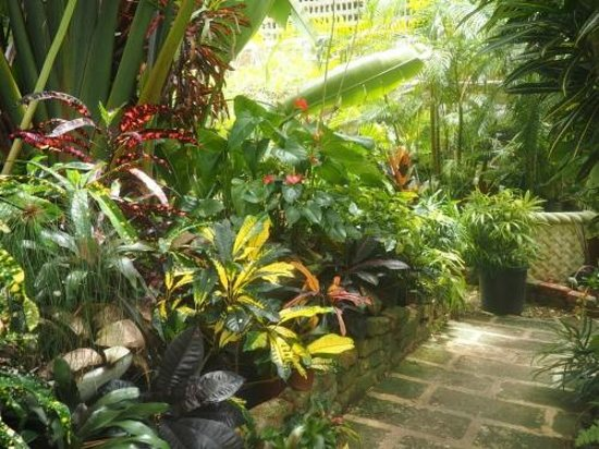 Hunte's Gardens : You never know what you will find next