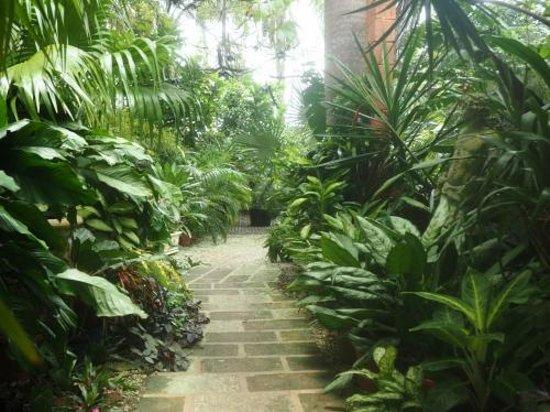 Hunte's Gardens : Pathways