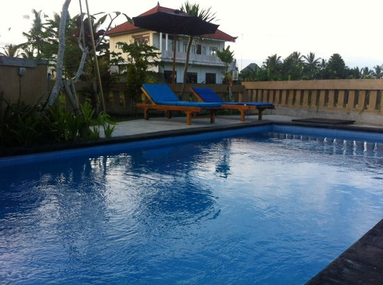 Ujung Ubud Guest House: Pool and sorround