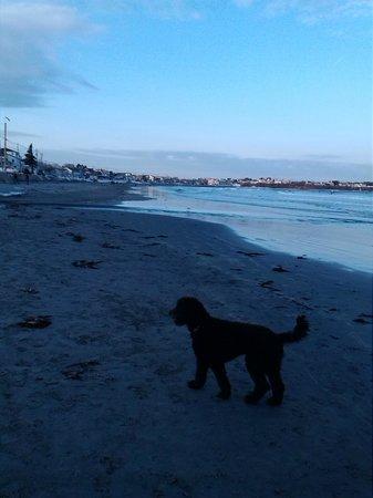 Long Sands Beach: the beach