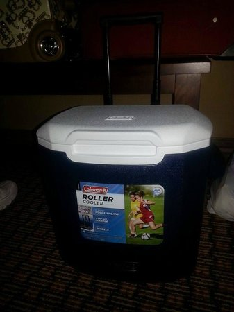 "Crowne Plaza Hotel Cleveland South - Independence: My purchased ""fridge"" for my drinks and medications"