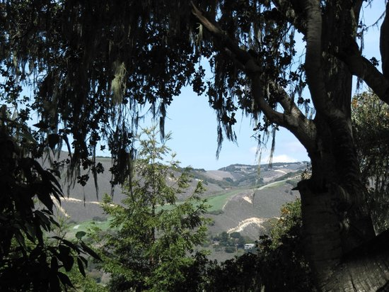 Carmel Valley Ranch: view from the walk on the property