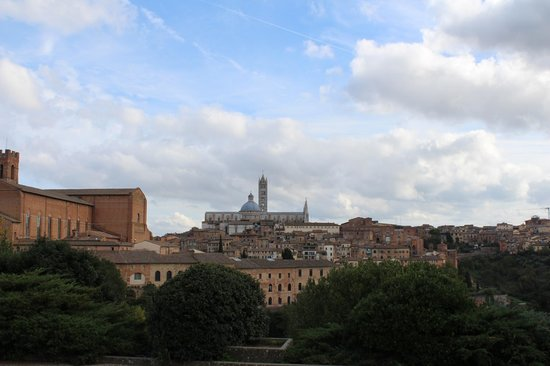 Alessandro Cammilli Private Tours: View of Siena