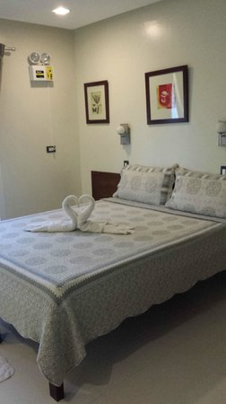 Bluelilly Hotel: Deluxe Room with two lovely swans~