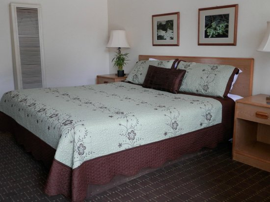 Villa Franca Inn: King bed room