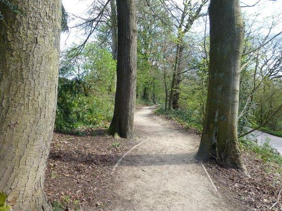 St Ives Estate: Road side path
