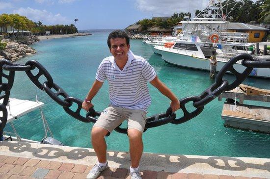 Lions Dive & Beach Resort Curacao: Vista entre o Hotel e o Aquário