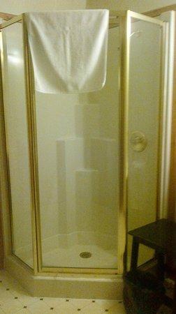 The Bear's Inn : Shower stall