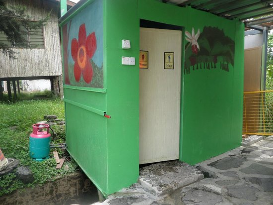 Jungle Jack Backpackers : bathroom with hot shower