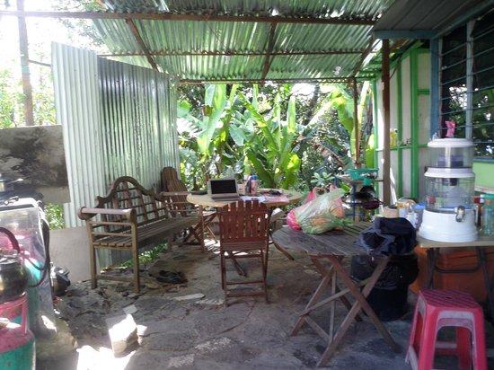 Jungle Jack Backpackers : shared kitchen