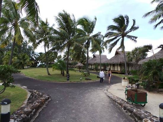 InterContinental Moorea Resort & Spa : dans l hotel