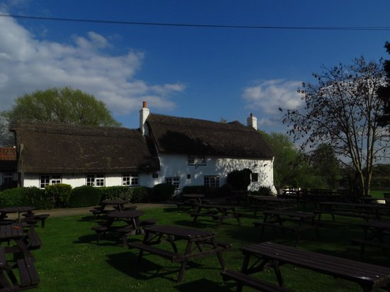 Massive Beer Garden at the Old Ferry Boat Inn