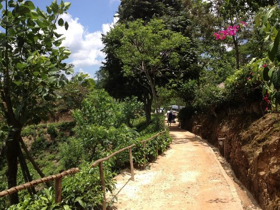 98 Acres Resort and Spa: Pathway from room to reception at 98 acres