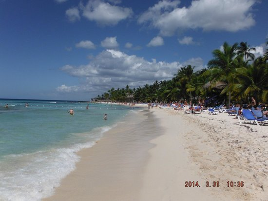 Viva Wyndham Dominicus Palace: spiaggia