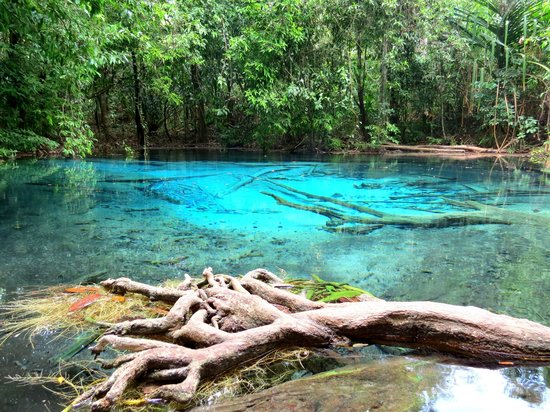Emerald Pool (Sa Morakot): Blue Pool