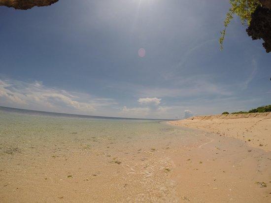 Tomia Scuba Dive: Paradise it is !