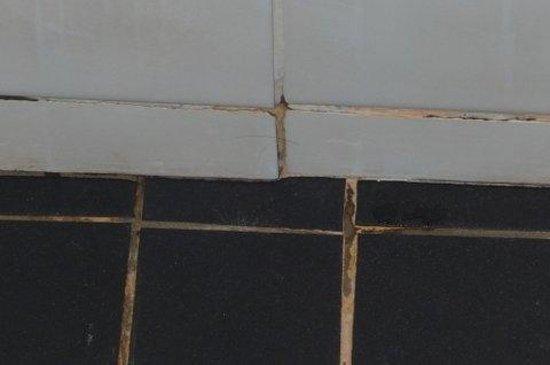 Guesthouse One Belvedere : douche is niet echt schoon