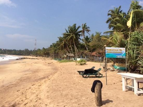 Hotel Frangipani Beach Villas : The beach view.