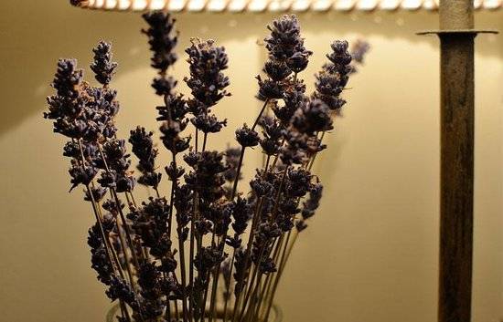 Red Feather Inn: Lavender in the Loft room