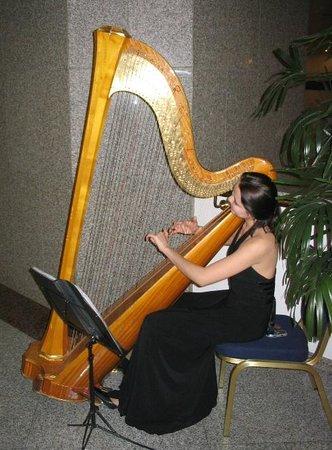 Corinthia Hotel St. Petersburg: Приятная фоновая живая музыка в холле...