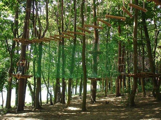 Park Linowy Tarzania