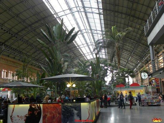 Estación de Atocha: Atocha Railroad Station - Panoramica