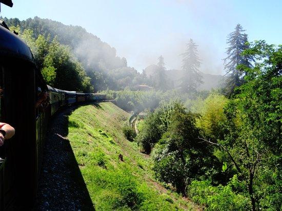 Train à Vapeur des Cévennes : très belle promenade