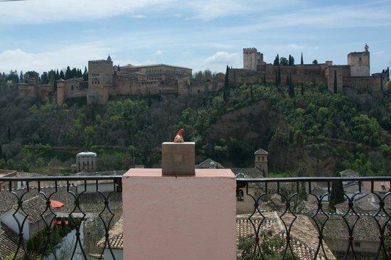 Las-Tres-Terrazas: Vue de la terrasse