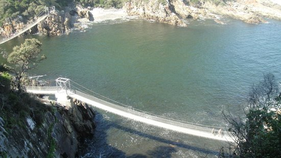 Storms River Mouth Restcamp : View of Suspension Bridge from Loerie Walk