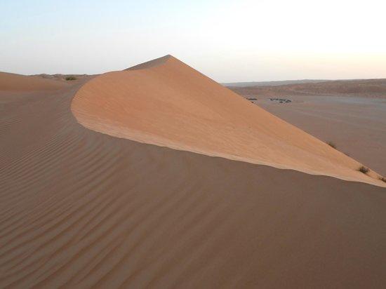 Desert Retreat Camp : Vue de la dune