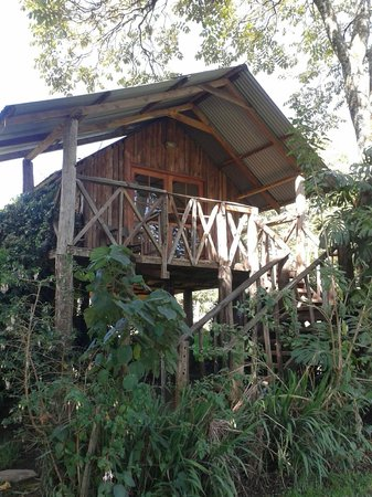 Kembu Cottages: The Treehouse