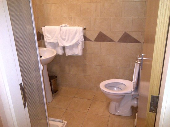 The Connaught Inn: Good shower system