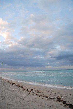 Blau Marina Varadero Resort: Spiaggia