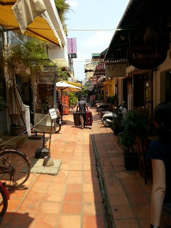 The Purple Mangosteen: Alley