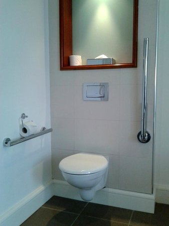 Hodson Bay Hotel: Accessible Bathroom