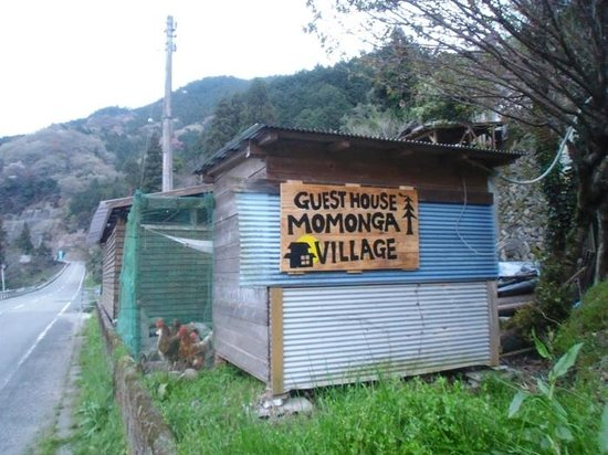 Momonga Village: Die Haushühner