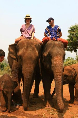 Patara Elephant Farm - Private Tours : Take a ride