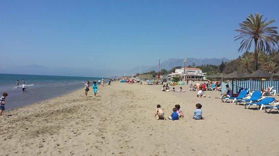 Vincci Seleccion Estrella del Mar : Playa