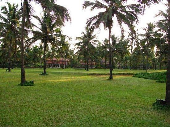 Vivanta by Taj - Holiday Village, Goa: Golf