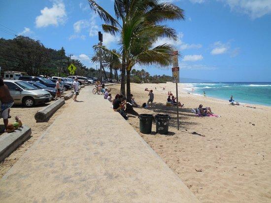 Sunset Beach Park : Parking along the beach