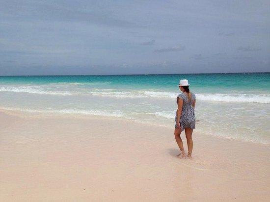Valentines Resort and Marina : Amazing beach