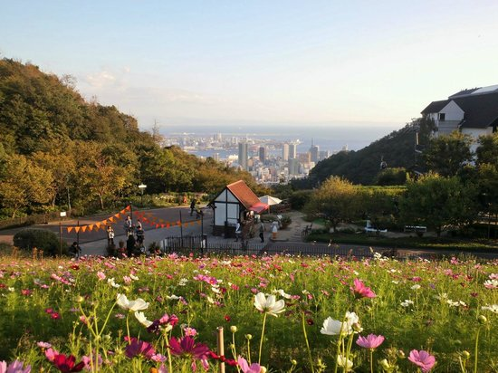 View of central Kobe from the herb garden, October 2013